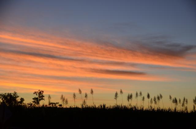 2013-06-14 sunsetmurrayupper 023