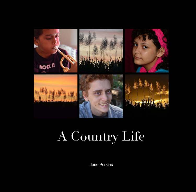 ACountryLife_Page_01