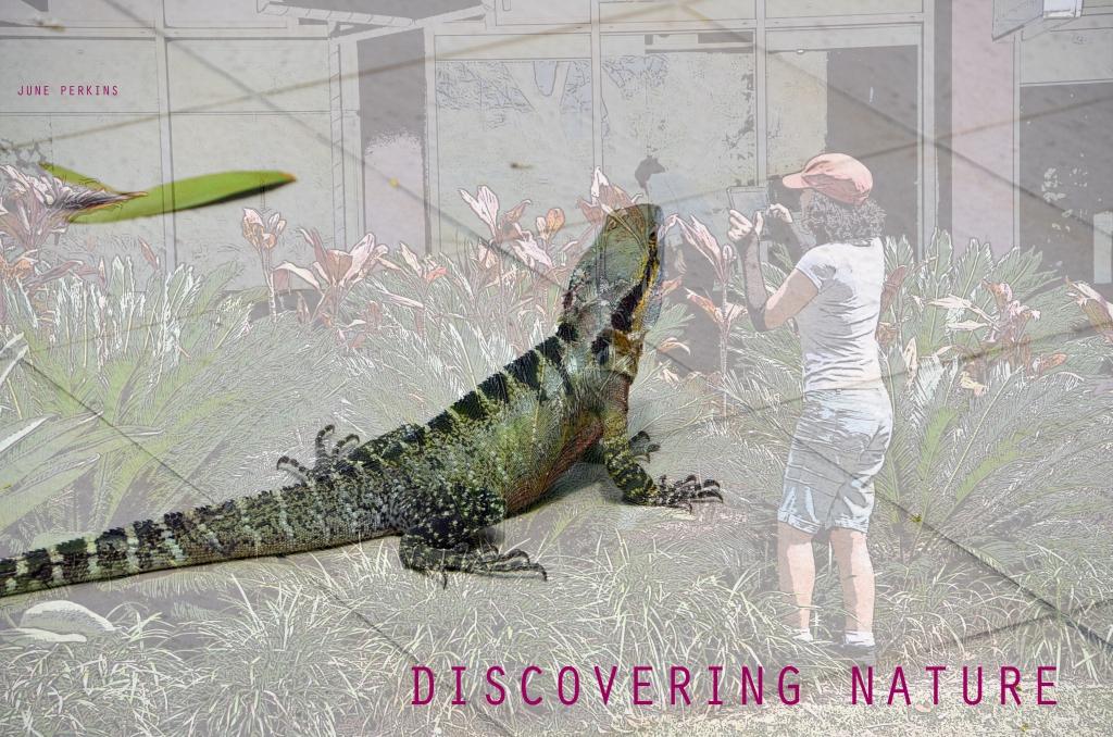 Discoveringnature3
