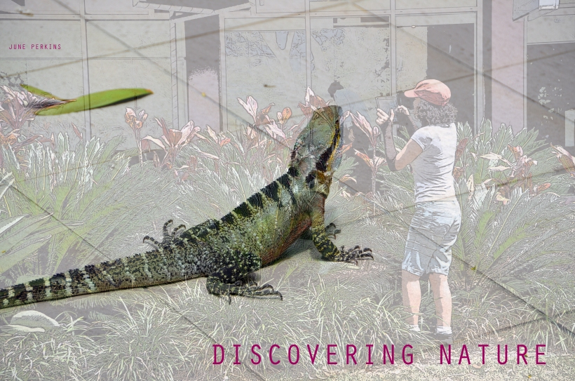 Discoveringnature3