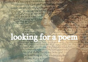 poetrycapes4