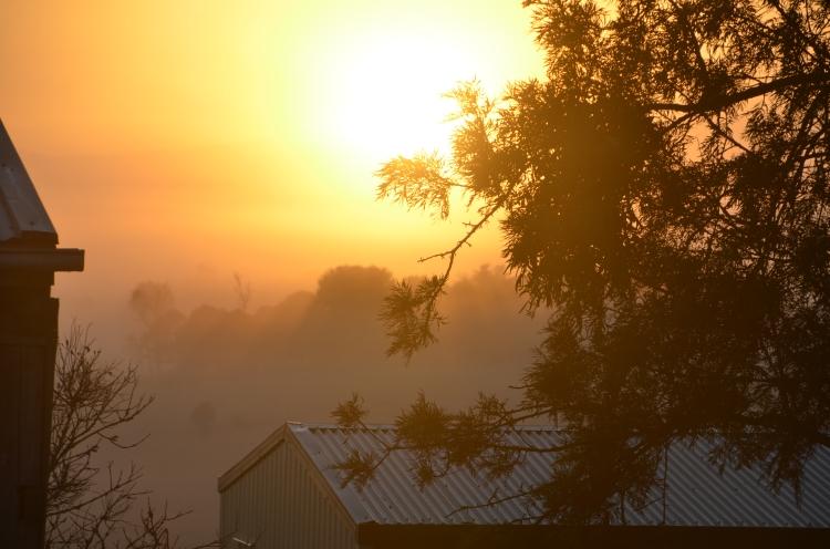 sunriseshedDSC_2944